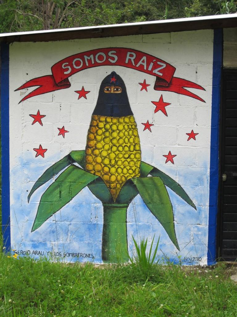 """""""SOMOS RAÍZ,"""" Oventic, 2012. Photograph by Diana Taylor"""